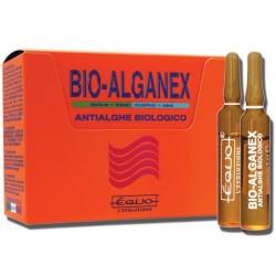 Equo Bio-Alganex 12 fiale