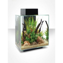 Askoll Acquario Edge 46 L Led Black