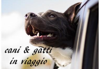 Cani & Gatti Trasporto